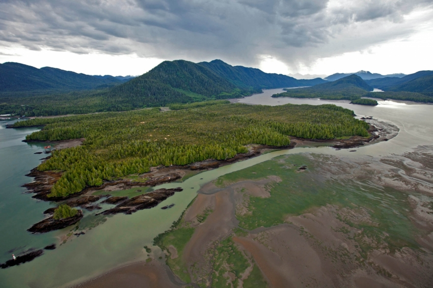 Lelu Island, prime salmon habitat at the mouth of the Skeena River