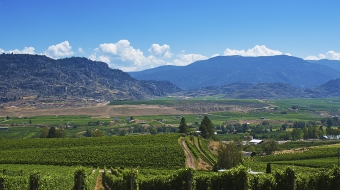 Plan a 'green getaway' to the Okanagan