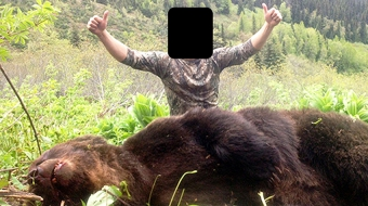 grizzly trophy hunt bc - Vancouver Observer