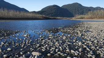 Photo of typical Fraser River gravel mining bar by Andrew S. Wright